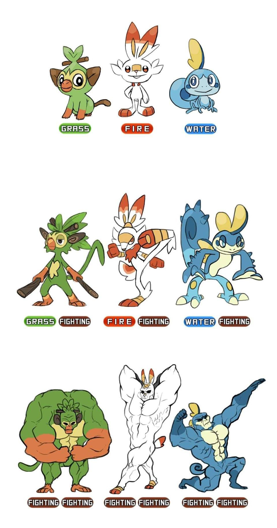 Gen 8 Starter Evolutions Pokemon Sword And Shield Know Your Meme