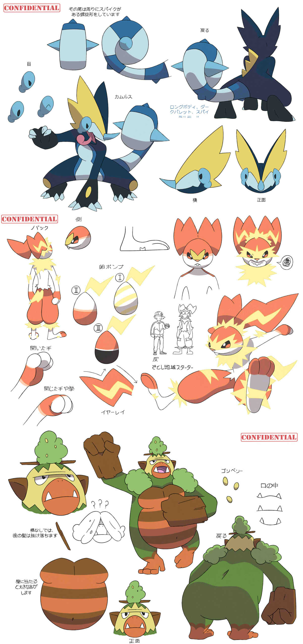 Possible Starter Evo Leaks Pokemon Sword And Shield Know Your Meme