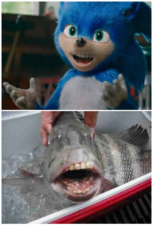 Fish Teeth Sonic The Hedgehog 2020 Film Know Your Meme