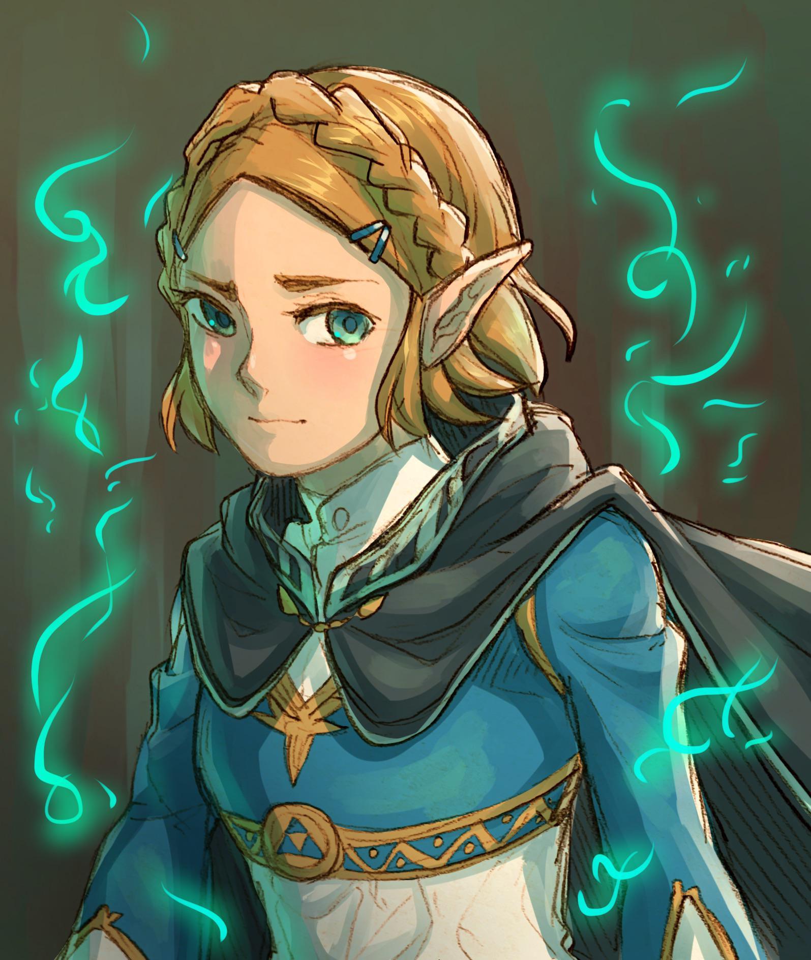 Short Hair Zelda The Legend Of Zelda Breath Of The Wild