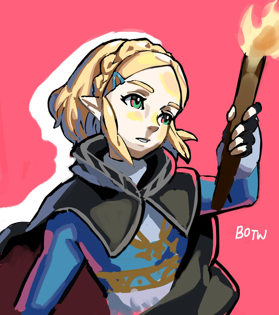 Short Hair Zelda The Legend Of Zelda Breath Of The Wild Know Your Meme