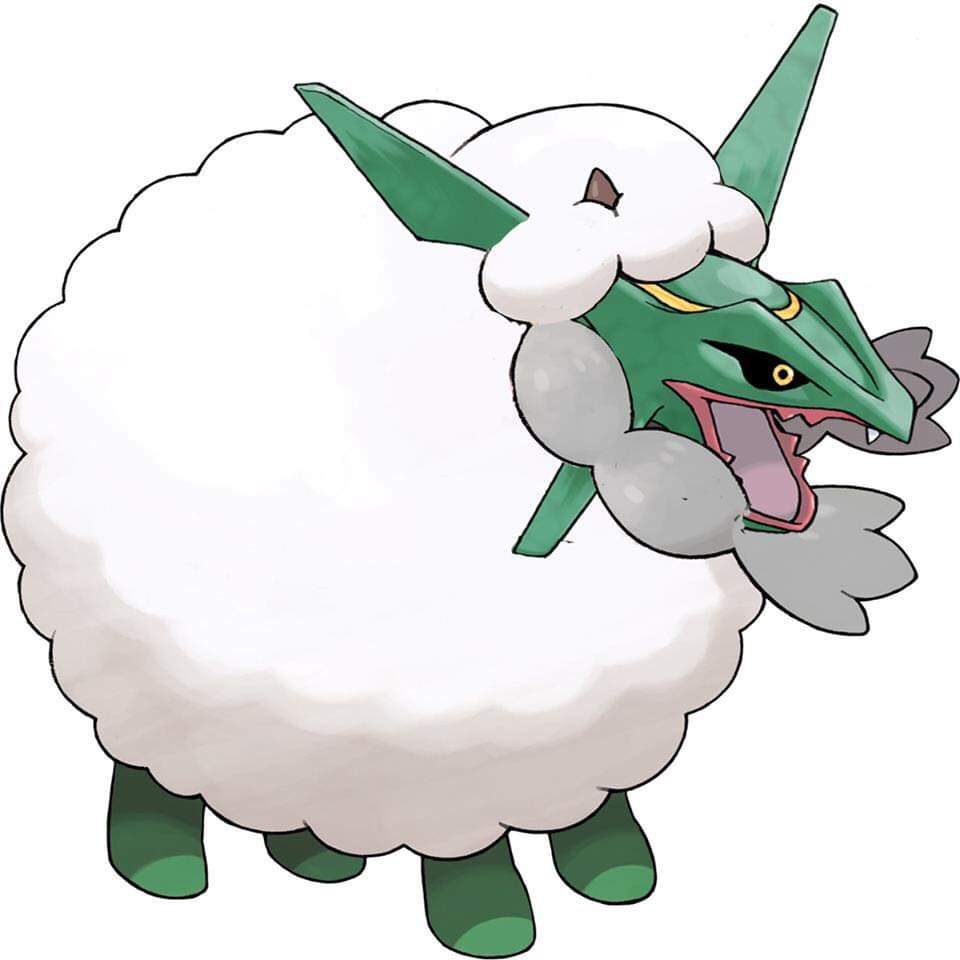 Don T Mind Me Officer Just Coming Back From Hoenn With My Wooloo