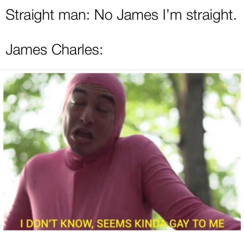 James Charles Seems Kinda Gay To Me Know Your Meme