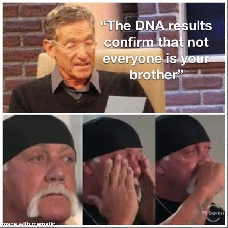 Not Your Brother Hulk Hogan Know Your Meme