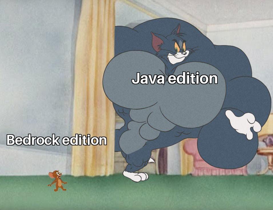 Bedrock edition vs  Java edition   r/MinecraftMemes