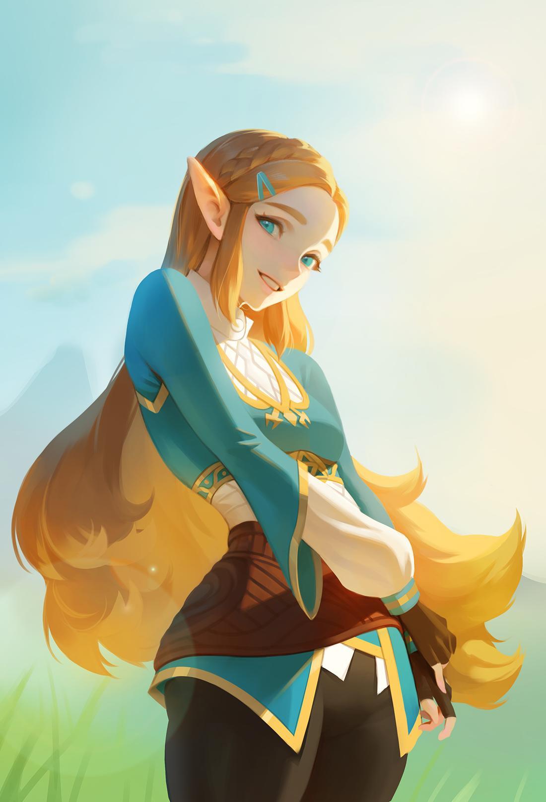 프린센스 젤다 The Legend Of Zelda Breath Of The Wild