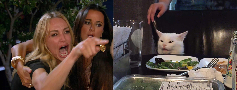 Мем девушки с котом