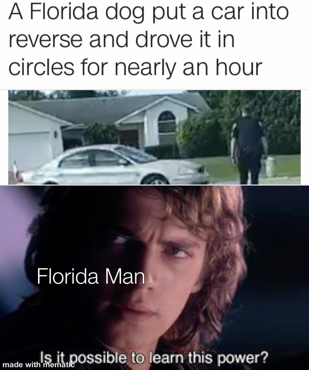 Florida Dog Florida Man R Prequelmemes Prequel Memes Know Your Meme
