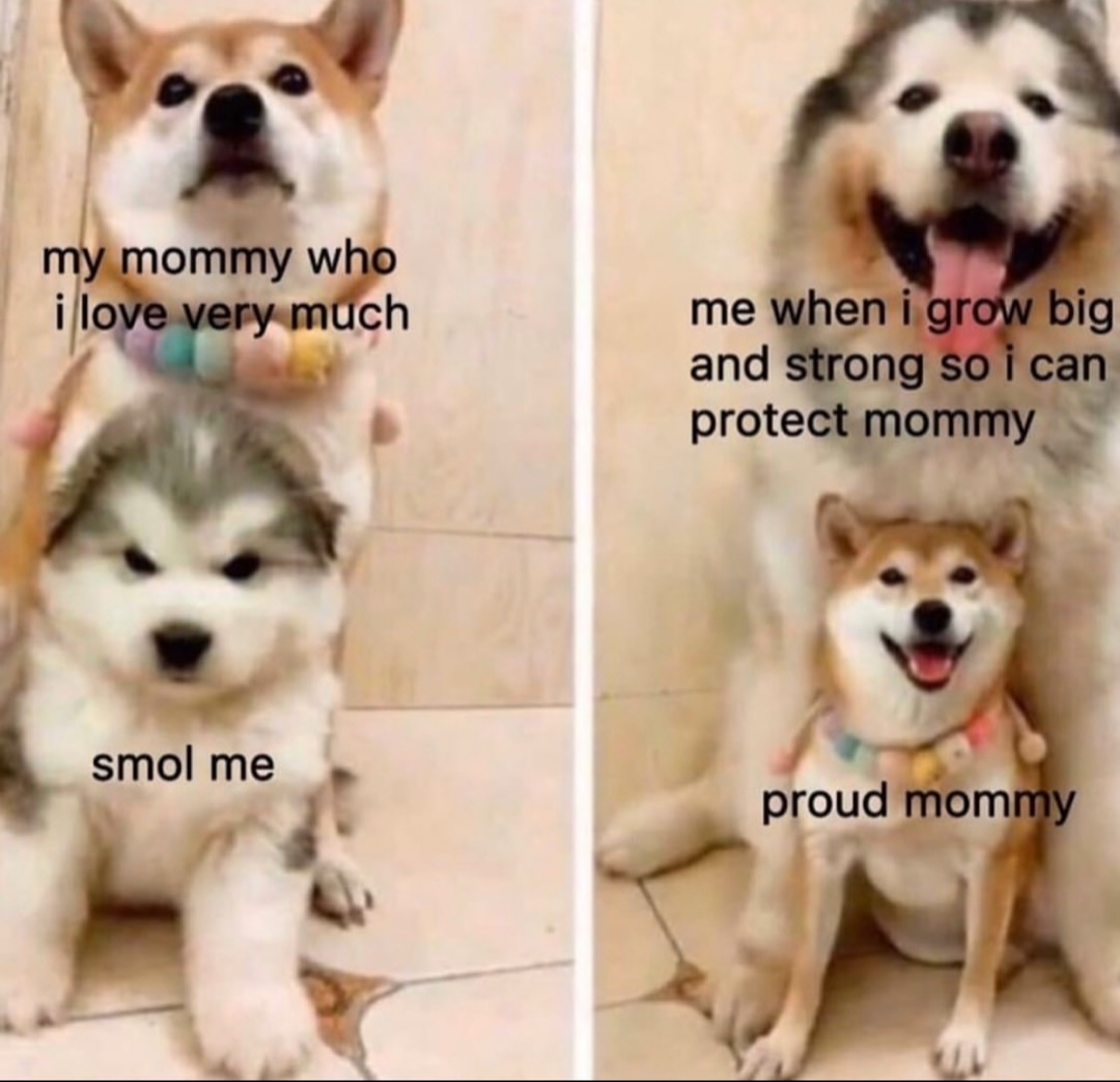 I Love You Mom R Wholesomememes Wholesome Memes Know Your Meme
