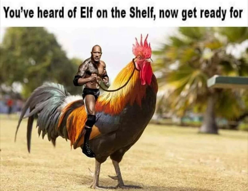 The Rock On A You Ve Heard Of The Elf On The Shelf