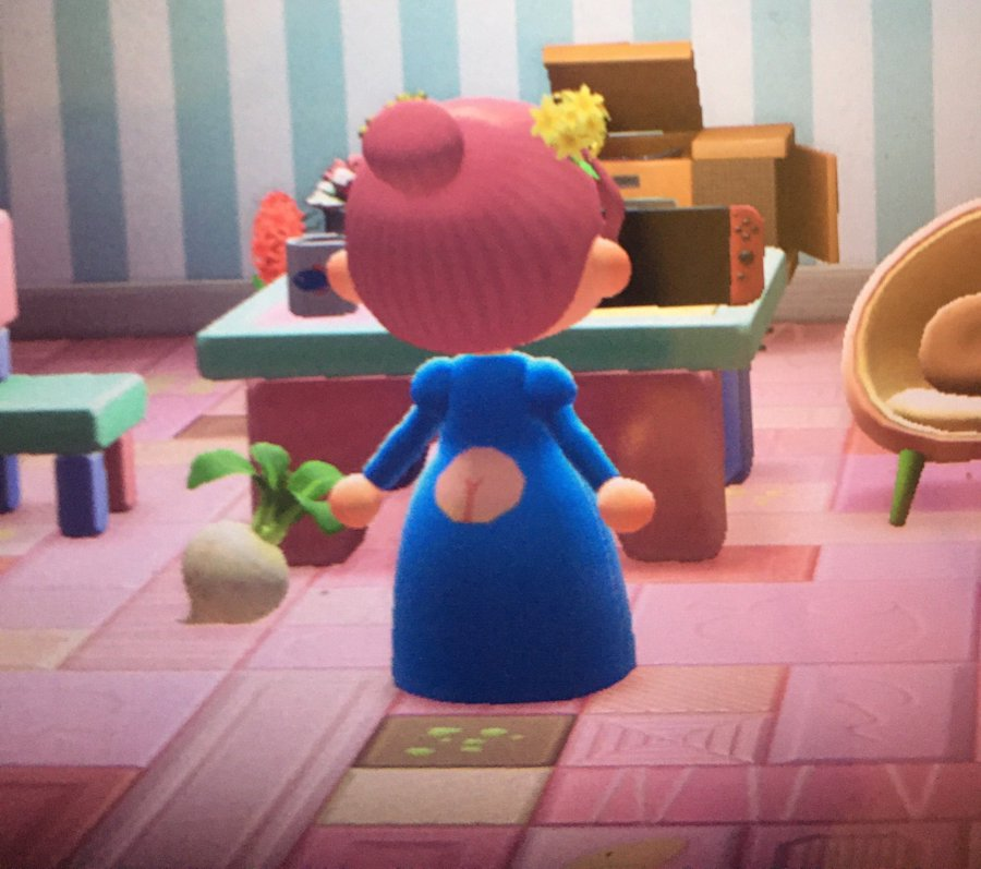 Good Dress Animal Crossing New Horizons Know Your Meme