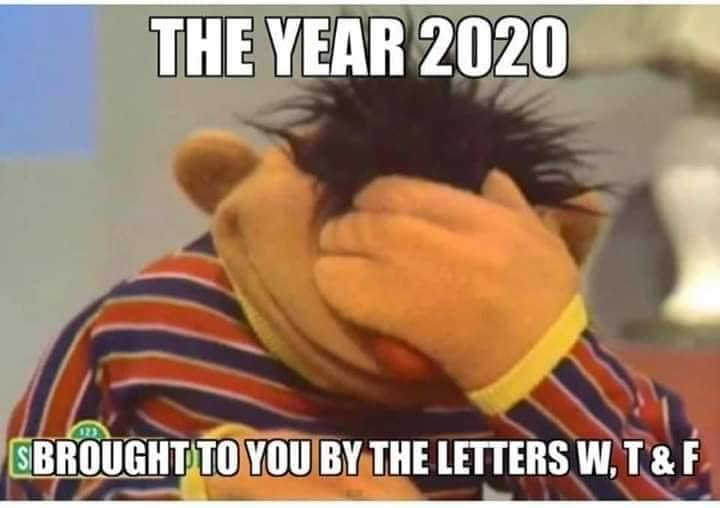 The year 2020 has brought to you by the letters W T & F | Sesame Street |  Know Your Meme