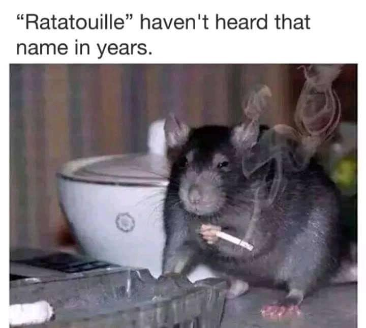 Ratatouille Pixar Know Your Meme