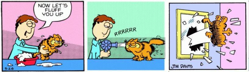 Window Throw Garfield Meme 6 Garfield Last Panel Replacements Know Your Meme